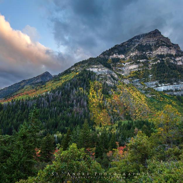 East Peak.jpg