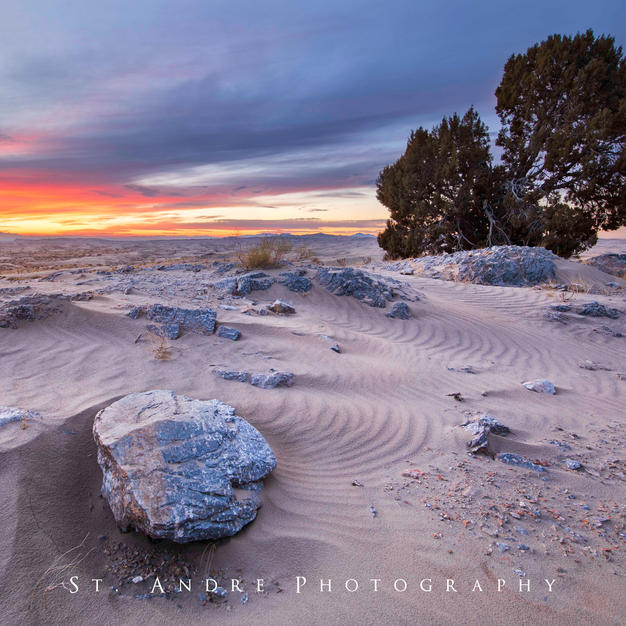 Sunset at the dunes.jpg