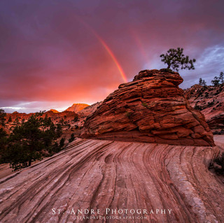 Growing Rainbows