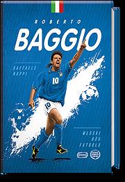 Baggio_3D_NET.png