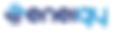 senergy logo.png