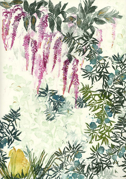 hanging amaranth & juniper