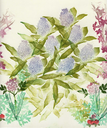 lilac & foliage