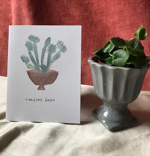 venus flytrap gives a hug