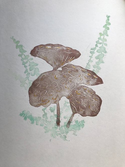 lotus pod print - 75% of proceeds to benefit social justice organizations