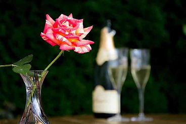 Rose mit Dom Perignon Flasche