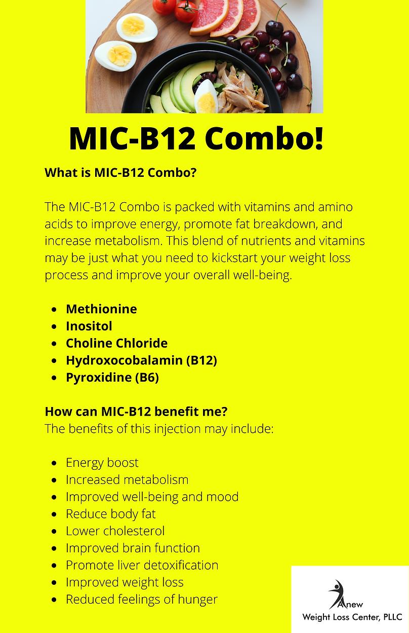 MIC-B12 Combo.png