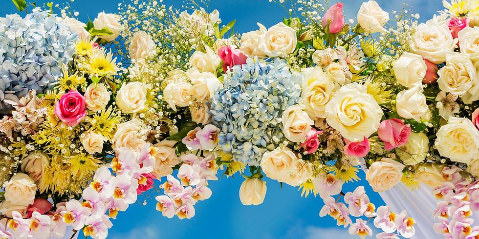 Sarah Maybury & Lewis Walsh Wedding Celebration