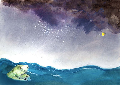 vlinder zeekoe prentenboek illustratie barbara van rheenen zee water oceaan