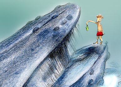 walvissen willewete walvissen mannetje vis bultrug illustratie barbara van rheenen