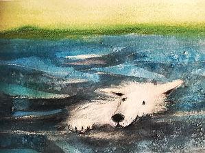hond zee illustratie barbara van rheenen