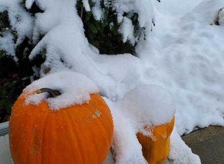 Snow on the pumpkin