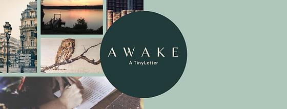 Awake Header.png