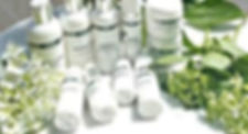 DMK Plant based.jpg