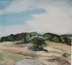 Sun-bleached fields