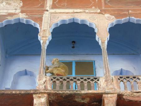 Escale historique à Jaïpur