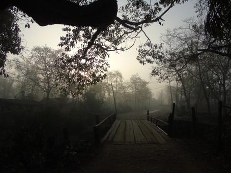 Parc national de la Bardia ❤️❤️