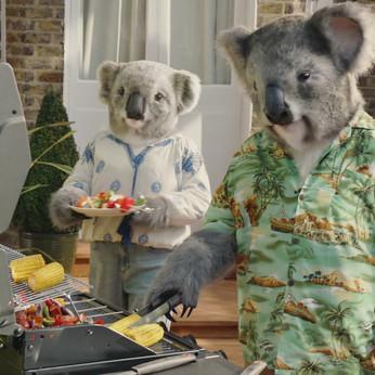 B & Q Koalas.jpg