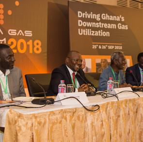 GGF2018 Expert Panel