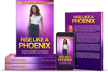Rise Like A Phoenix: Emotional Intelligene Strategies to Help You Maximize Your Potential Self-Development Book Purpose Driven Life
