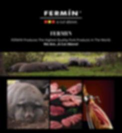 Fermin.jpg
