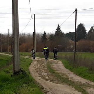 fietsen2.jpg