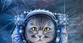 Space Cat aka Cap't Schrodinger - Katherine Brown