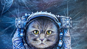 Space Cat aka Cap't Schrodinger - Katherine Brown