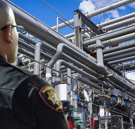 pipelines%202_edited.jpg