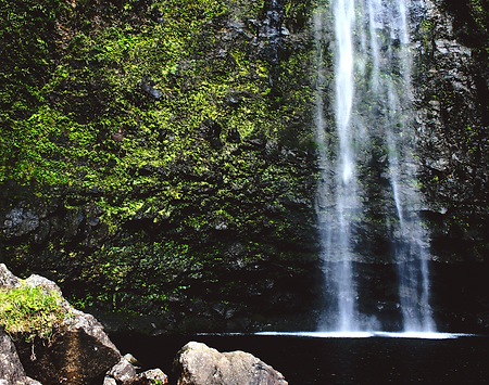 waterfall, water, forest, sustainable, water