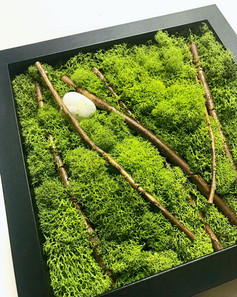 moss and branches