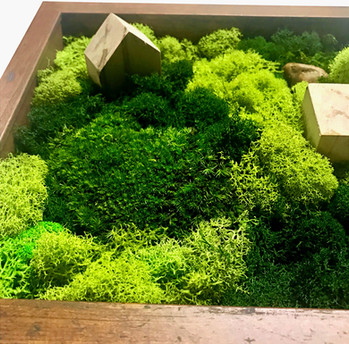 moss and wood
