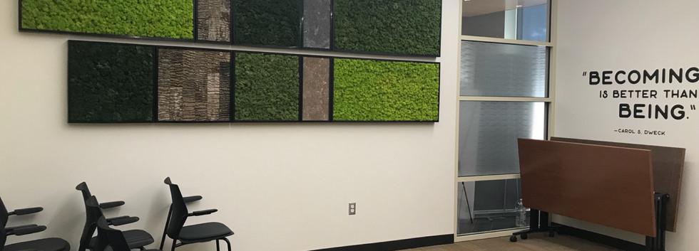 moss, bark, stone installation