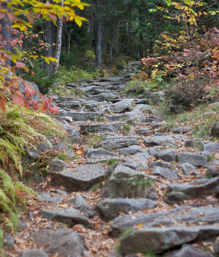 Stepstone Strategic non profit consulting stone path photo