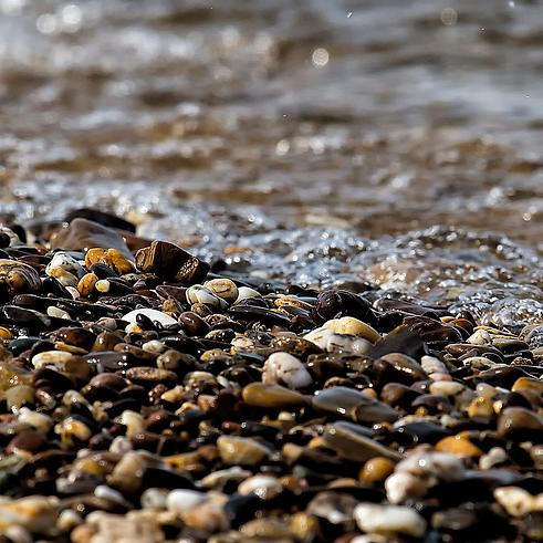 river rock, stone, water, natural, ocean
