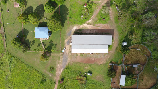 Clairview Homestead & Yards