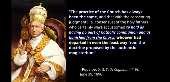 Pope Leo XIII 1896.png