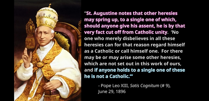 Pope Leo XIII 1896-3.png