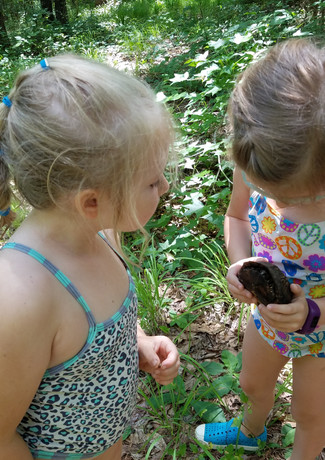 Alice and Ella with turtle.jpg