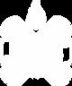 DW White Logo.png
