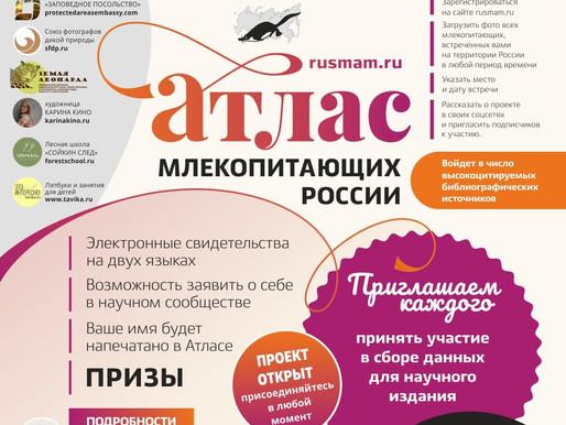 СФДП поддержал проект по созданию Атласа млекопитающих России