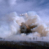Forest fire in the Chita region