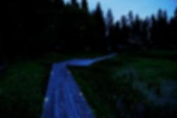 A9A04727_s_edited.jpg