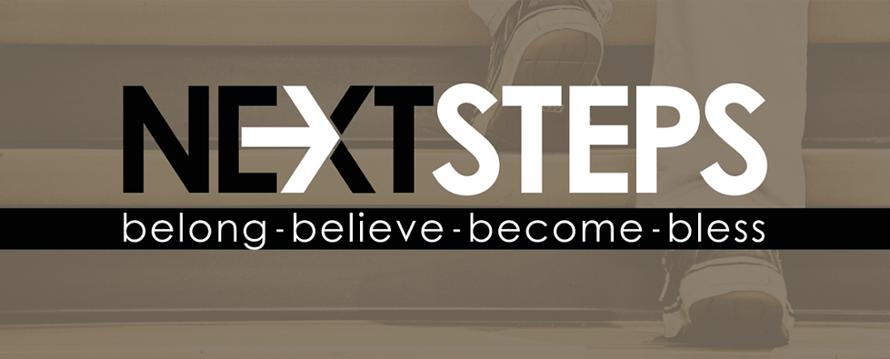 Next-Steps-Slider-1-1024x413.png