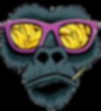 monkey2_edited.png