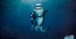 Shark Week! When Keynote Presenters Attack: An Open Letter to The Person Questioning my Reformation