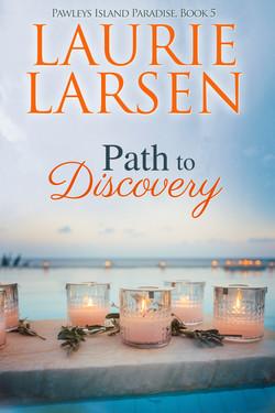 PathToDiscovery_Revised_CVR (1)
