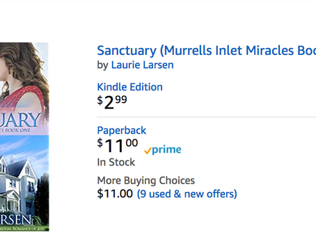 Sanctuary is an Amazon #1 Bestseller today!