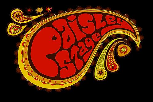 PAISLEY STAGE logo T shirt