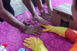 Testing for phantom limb in Gummy Arm by Steven Ounanian.
